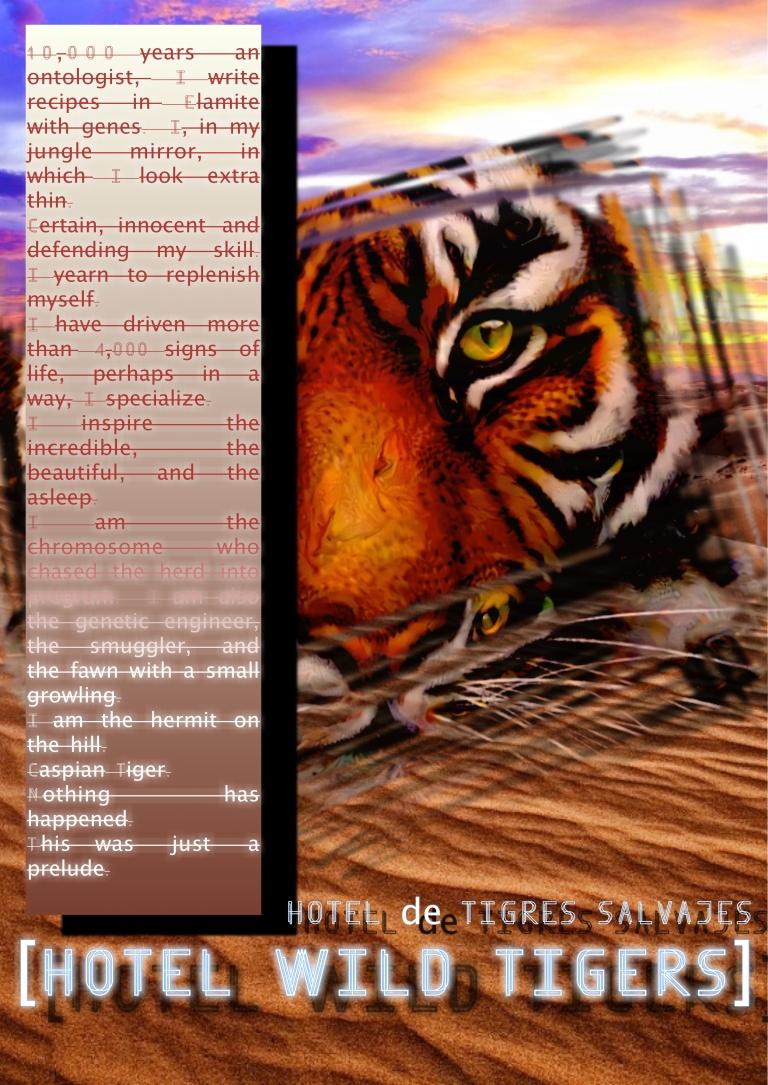Hotel Wild Tigers Book copy